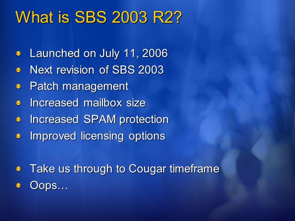 What is SBS 2003 R2.