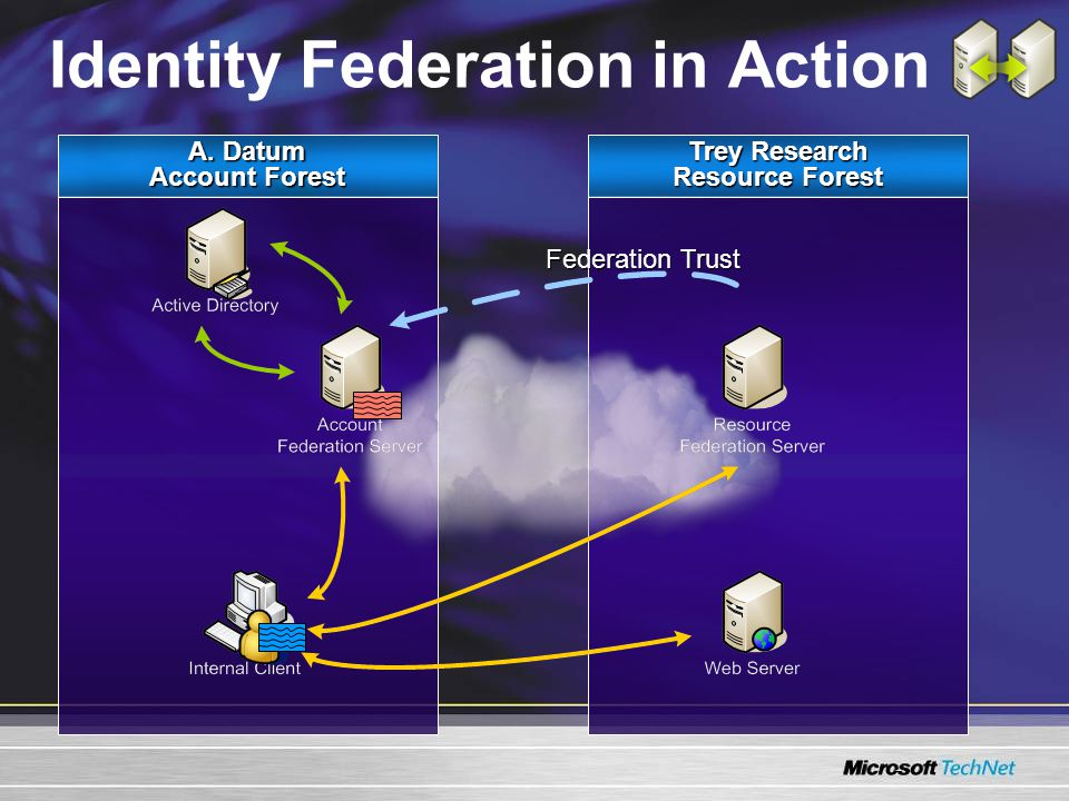 A. Datum Account Forest Trey Research Resource Forest Identity Federation in Action Federation Trust