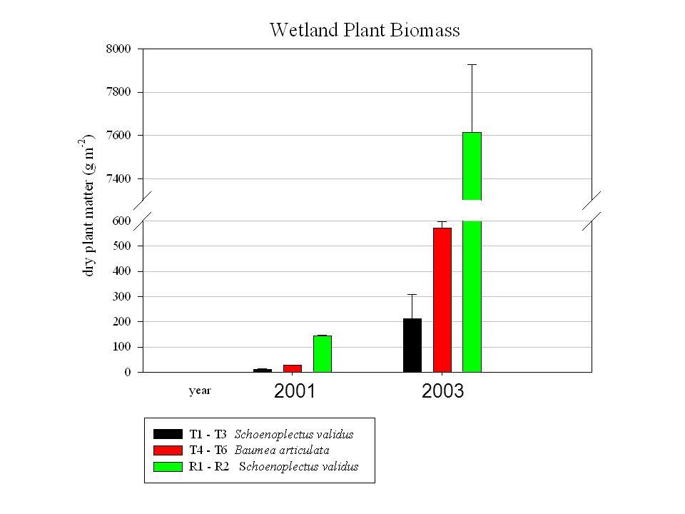 2001 2003