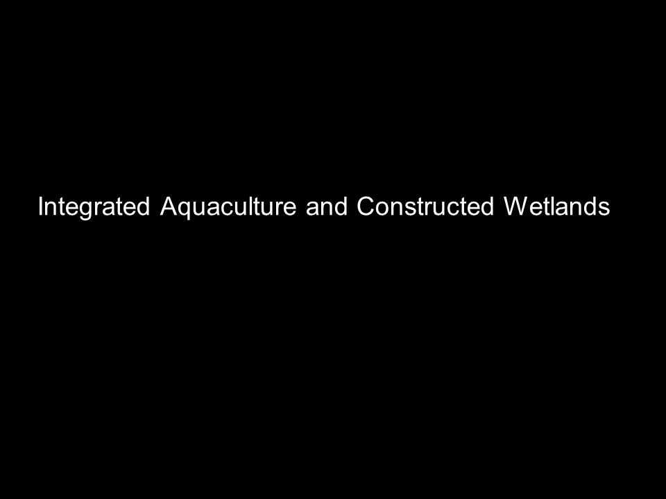 Integrated Aquaculture and Constructed Wetlands