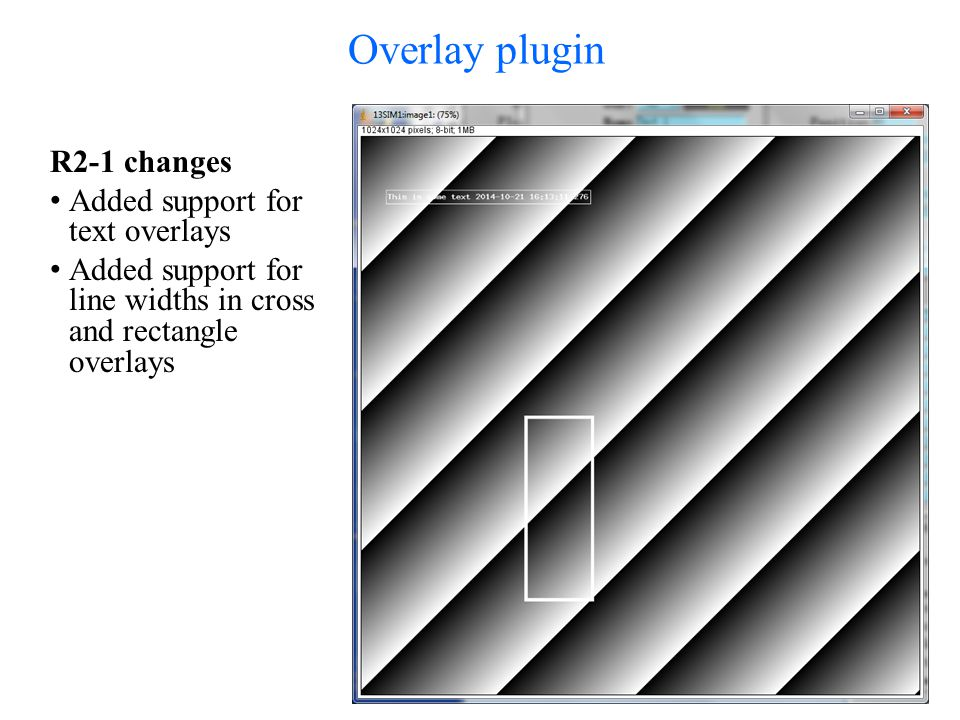 Overlay plugin R2-1 changes Added support for text overlays Added support for line widths in cross and rectangle overlays