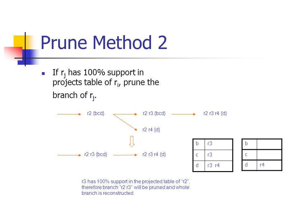 Prune Method 2 If r j has 100% support in projects table of r i, prune the branch of r j.