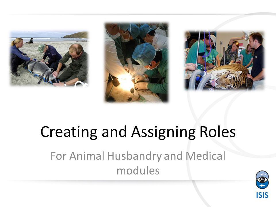 Creating and Assigning Roles For Animal Husbandry and Medical modules