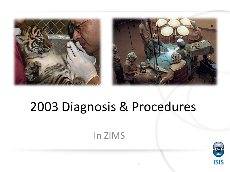 2003 Diagnosis & Procedures In ZIMS 1
