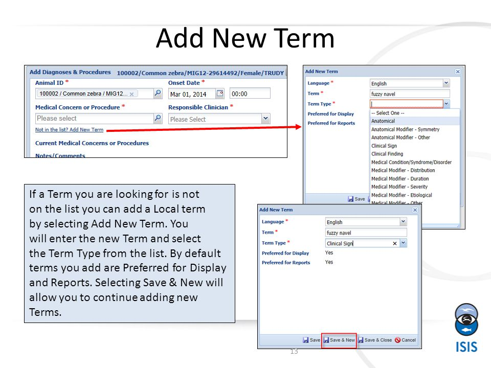 Add New Term If a Term you are looking for is not on the list you can add a Local term by selecting Add New Term.