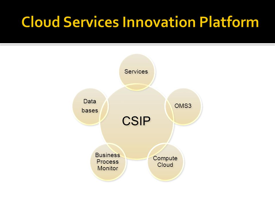 CSIP Services OMS3 Compute Cloud Business Process Monitor Data bases Data bases