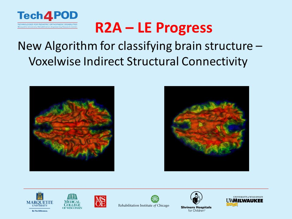 R2A – LE Progress New Algorithm for classifying brain structure – Voxelwise Indirect Structural Connectivity
