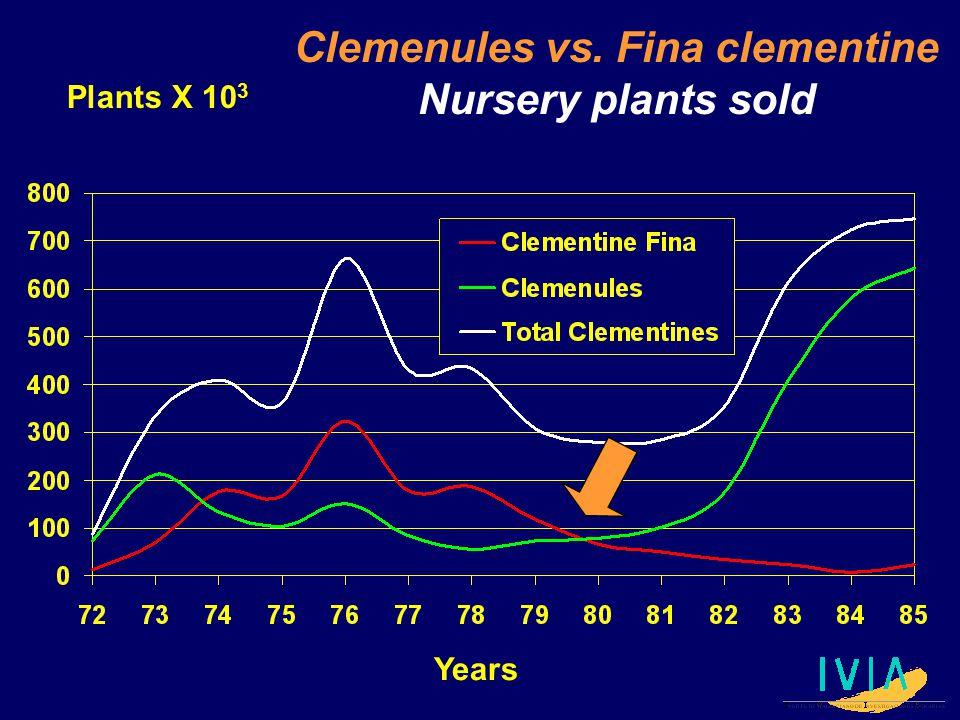 Plants X 10 3 Years Clemenules vs. Fina clementine Nursery plants sold