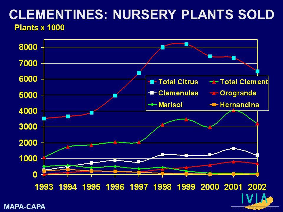 Plants x 1000 CLEMENTINES: NURSERY PLANTS SOLD MAPA-CAPA