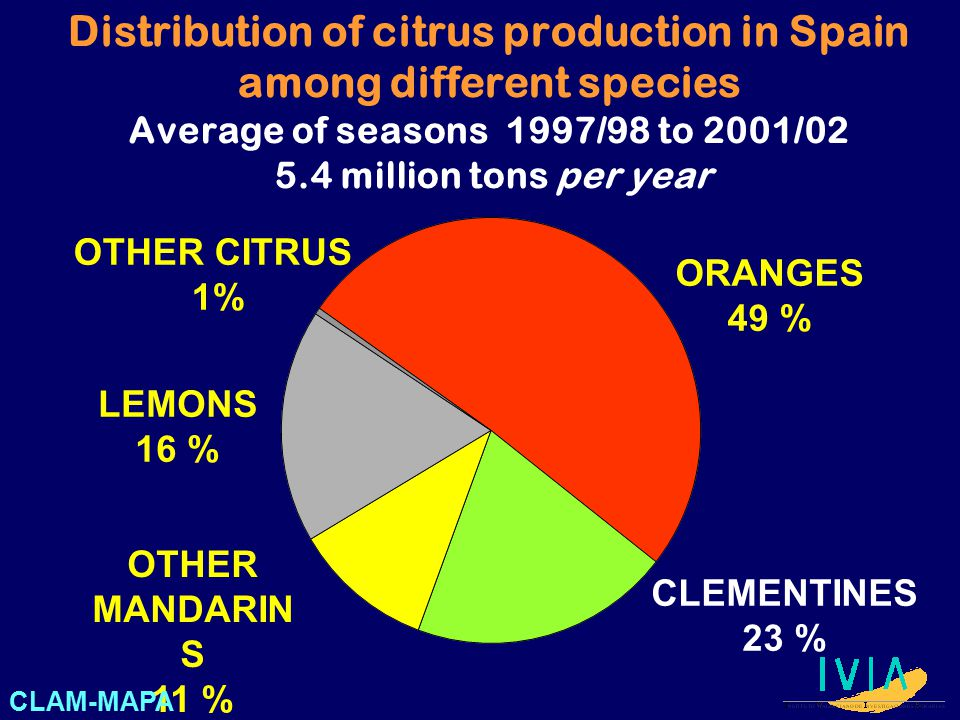 Distribution of citrus production in Spain among different species Average of seasons 1997/98 to 2001/02 5.4 million tons per year ORANGES 49 % OTHER