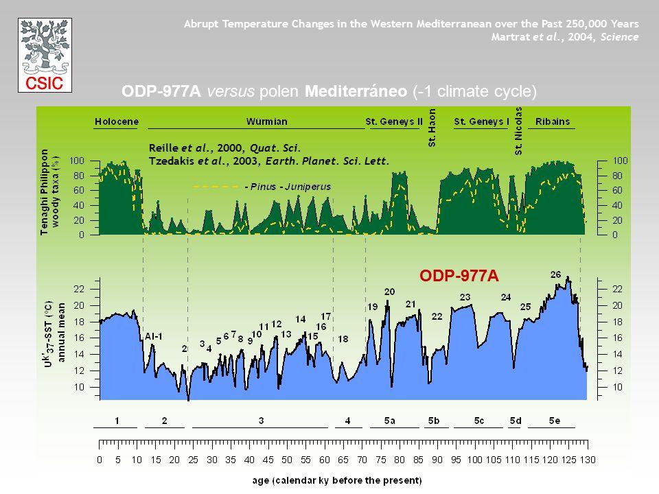 ODP-977A ODP-977A versus polen Mediterráneo (-1 climate cycle) Reille et al., 2000, Quat. Sci. Tzedakis et al., 2003, Earth. Planet. Sci. Lett. Abrupt