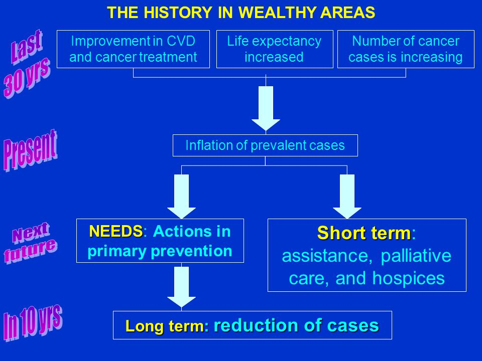 Improvement in CVD and cancer treatment Life expectancy increased Number of cancer cases is increasing Inflation of prevalent cases NEEDS NEEDS: Actions in primary prevention Long term: reduction of cases Short term Short term: assistance, palliative care, and hospices THE HISTORY IN WEALTHY AREAS