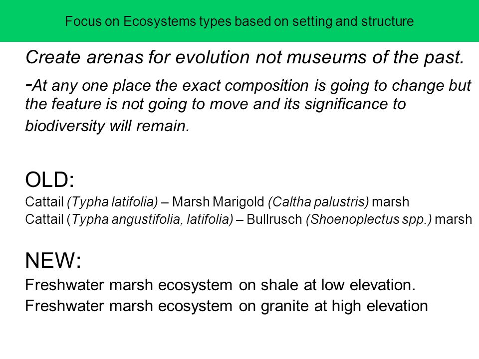 Focus on Ecosystems types based on setting and structure Create arenas for evolution not museums of the past. - At any one place the exact composition