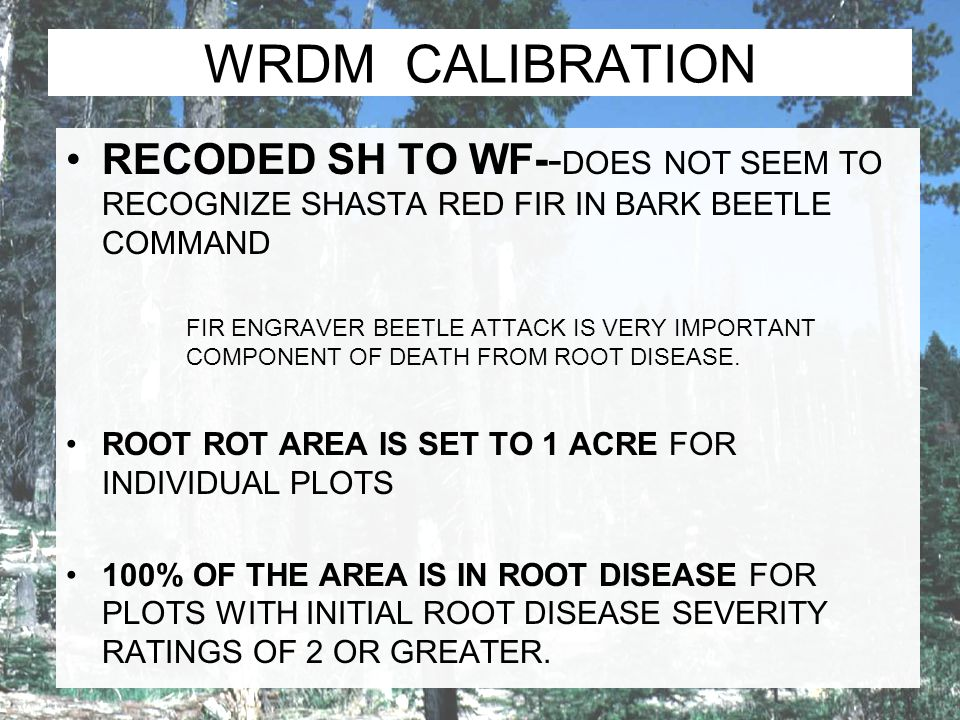 WRDM CALIBRATION RECODED SH TO WF-- DOES NOT SEEM TO RECOGNIZE SHASTA RED FIR IN BARK BEETLE COMMAND FIR ENGRAVER BEETLE ATTACK IS VERY IMPORTANT COMP
