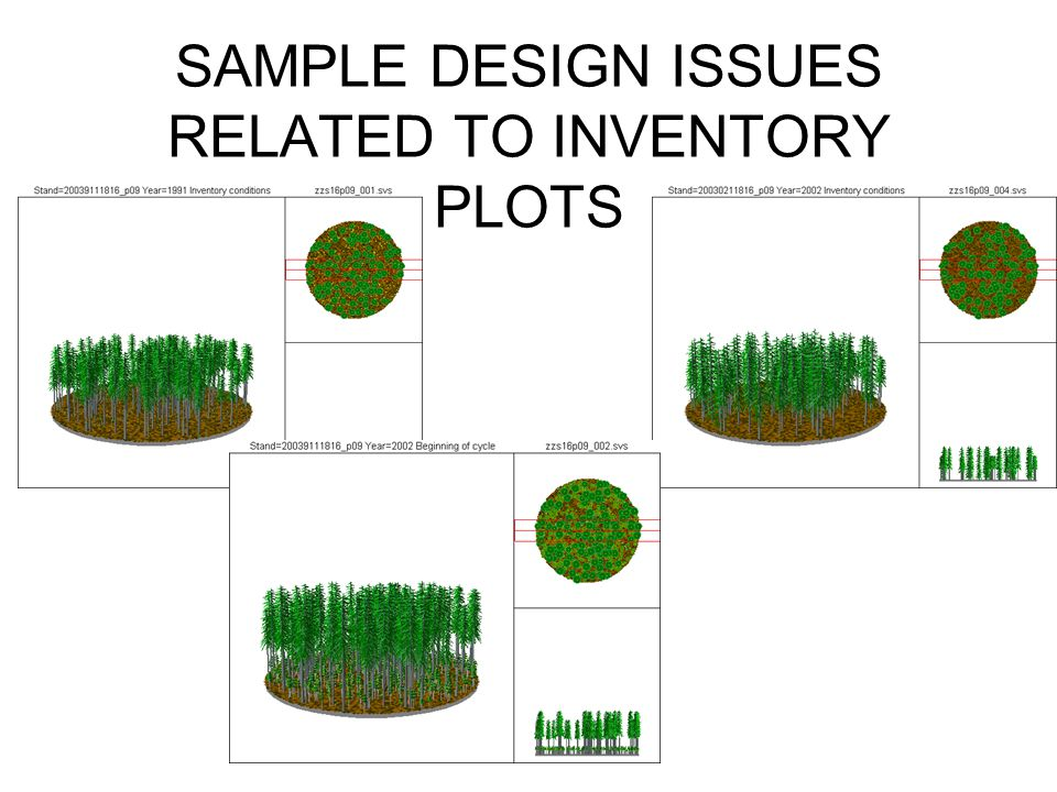 SAMPLE DESIGN ISSUES RELATED TO INVENTORY PLOTS