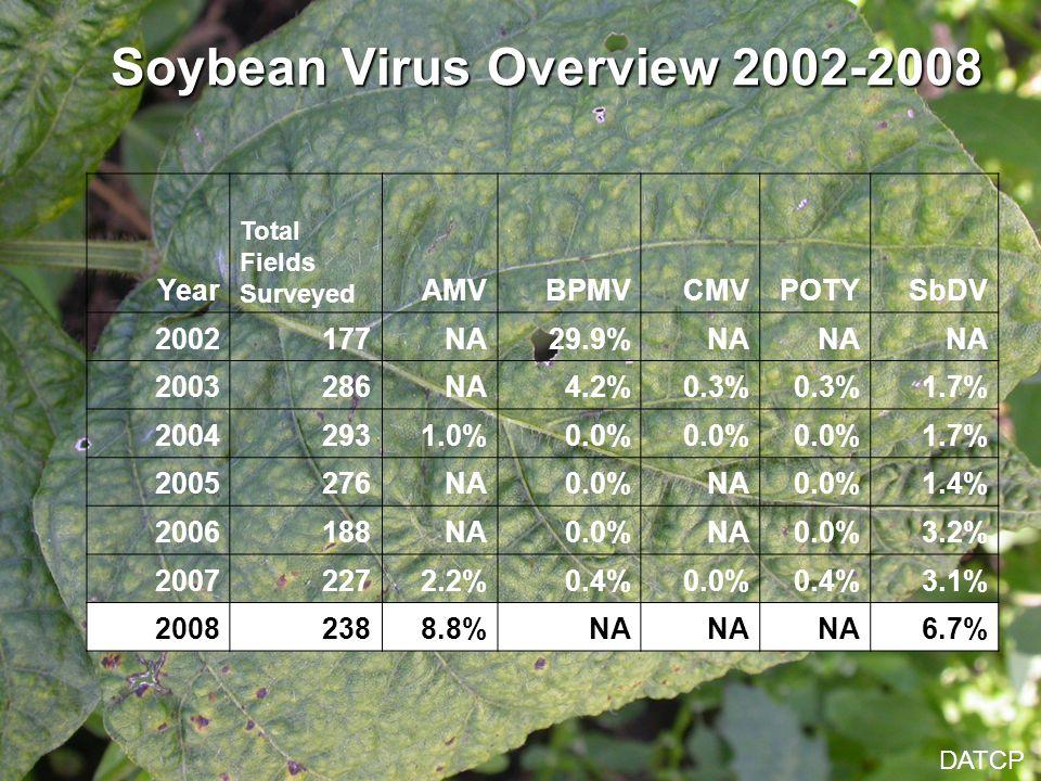 Soybean Virus Overview 2002-2008 DATCP Year Total Fields Surveyed AMVBPMVCMVPOTYSbDV 2002177NA29.9%NA 2003286NA4.2%0.3% 1.7% 20042931.0%0.0% 1.7% 2005276NA0.0%NA0.0%1.4% 2006188NA0.0%NA0.0%3.2% 20072272.2%0.4%0.0%0.4%3.1% 20082388.8%NA 6.7%