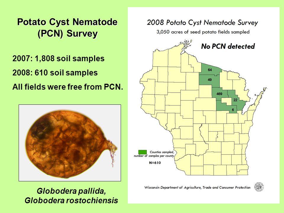 Potato Cyst Nematode (PCN) Survey 2007: 1,808 soil samples 2008: 610 soil samples All fields were free from PCN.