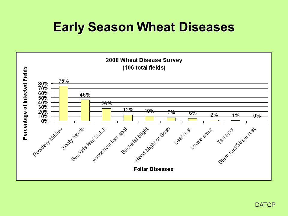 Early Season Wheat Diseases DATCP