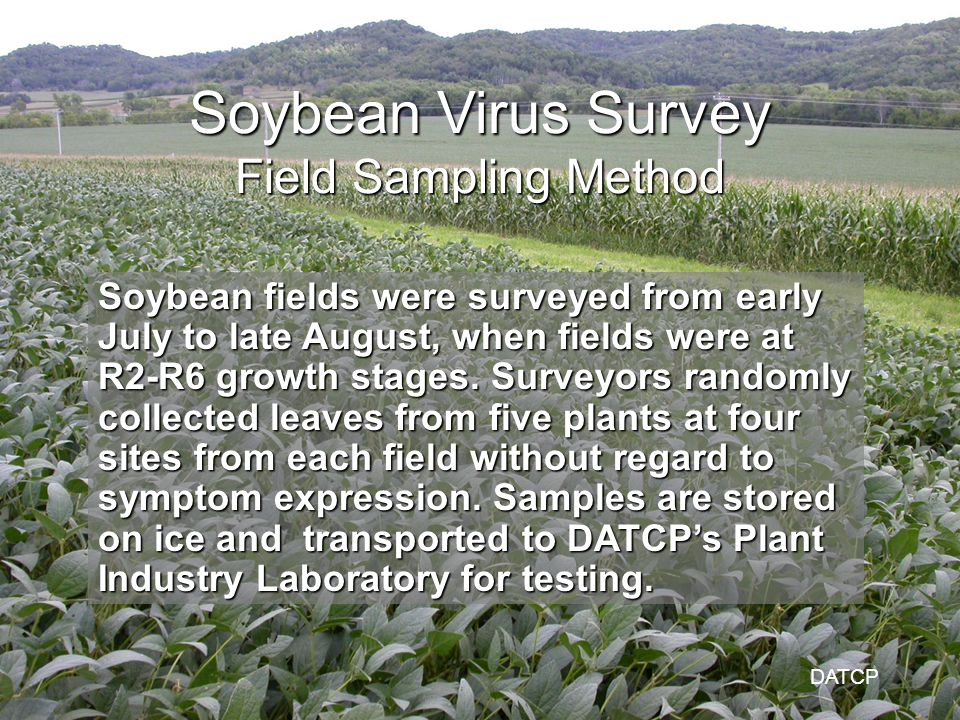 Soybean fields were surveyed from early July to late August, when fields were at R2-R6 growth stages.