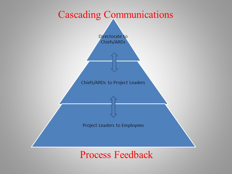 Directorate to Chiefs/ARDs Chiefs/ARDs to Project Leaders Project Leaders to Employees Cascading Communications Process Feedback