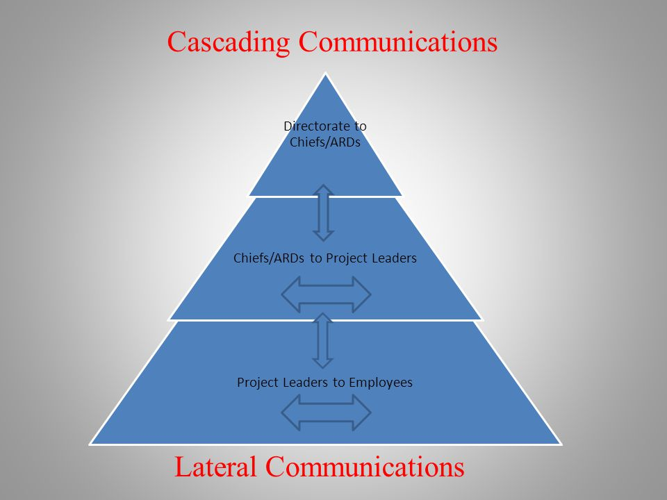 Directorate to Chiefs/ARDs Chiefs/ARDs to Project Leaders Project Leaders to Employees Cascading Communications Lateral Communications