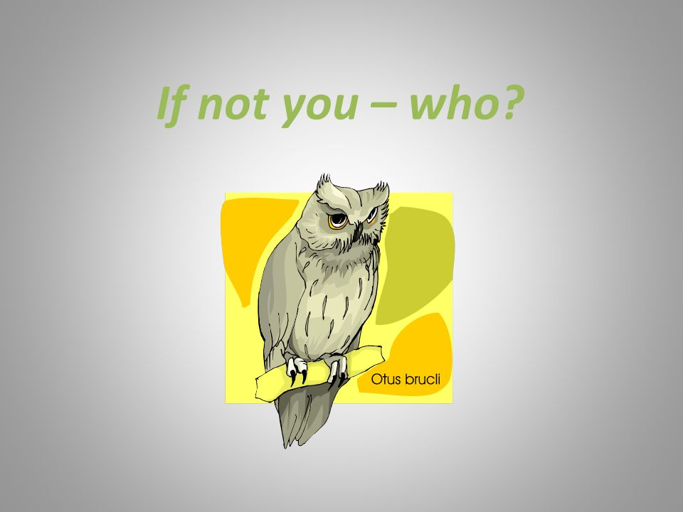 If not you – who