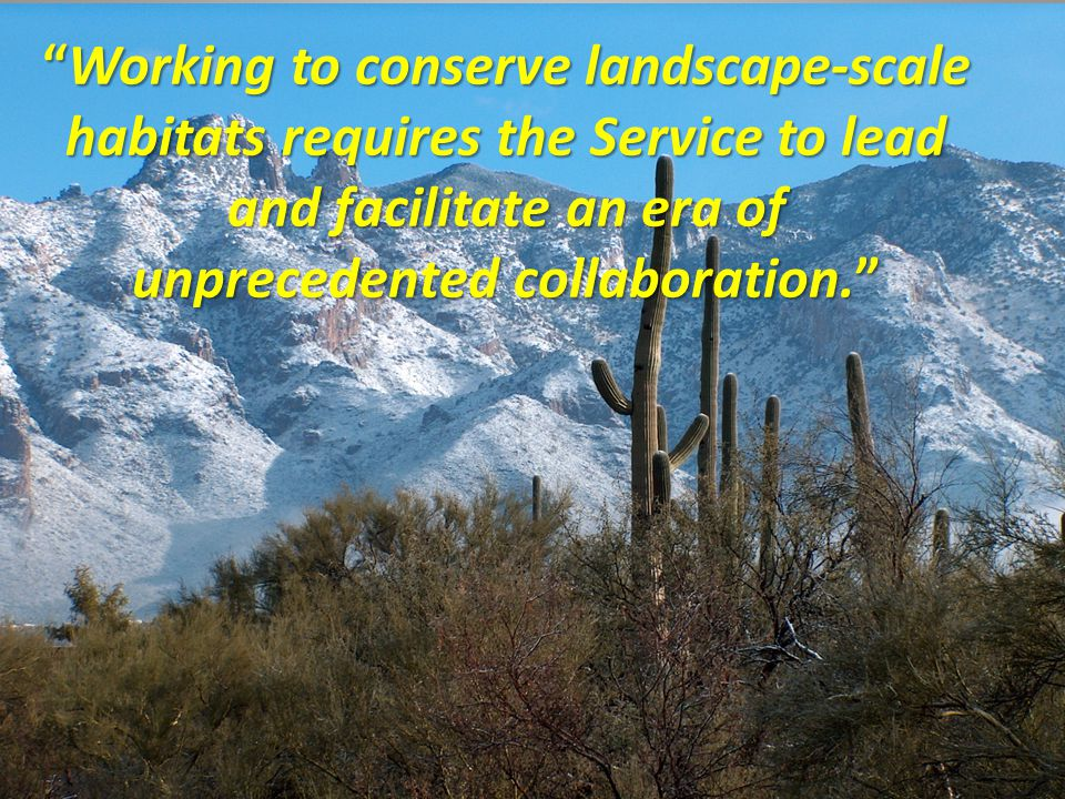 Working to conserve landscape-scale habitats requires the Service to lead and facilitate an era of unprecedented collaboration.