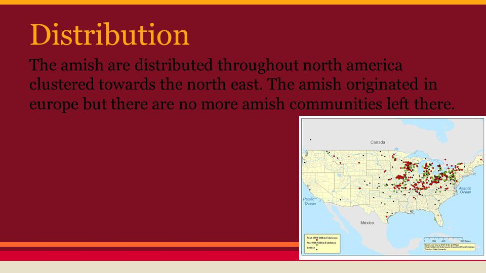 Distribution The amish are distributed throughout north america clustered towards the north east. The amish originated in europe but there are no more