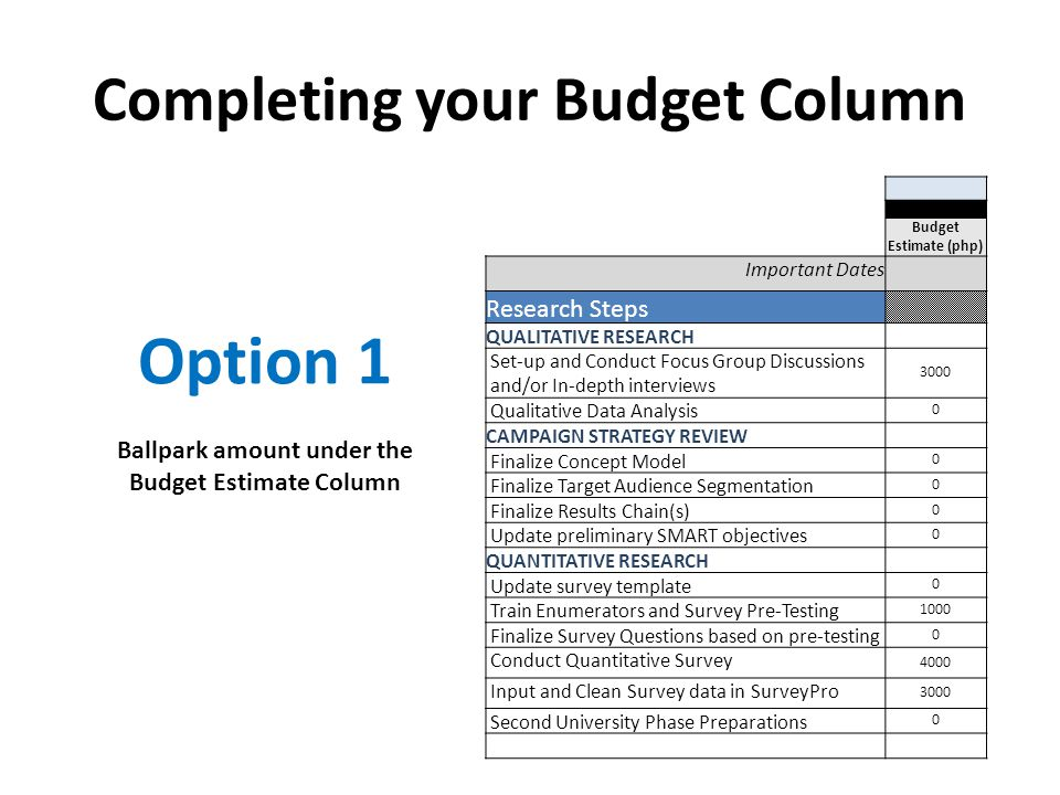 Completing your Budget Column Budget Estimate (php) Important Dates Research Steps QUALITATIVE RESEARCH Set-up and Conduct Focus Group Discussions and