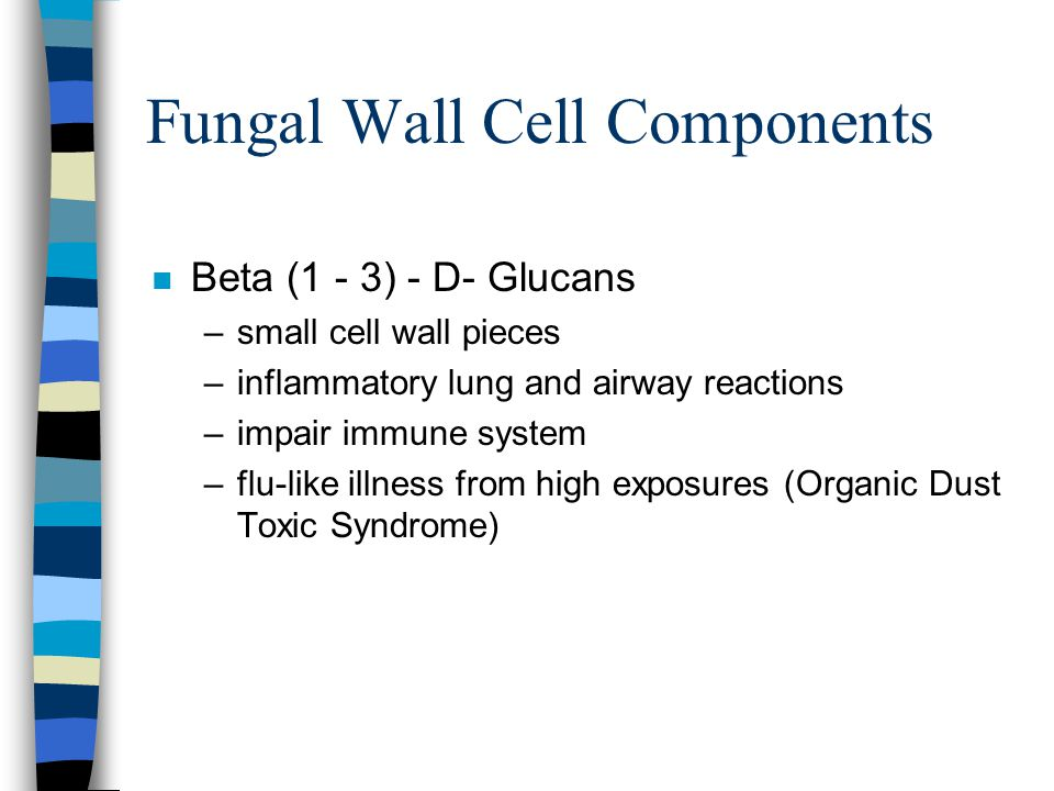 Fungal Wall Cell Components n Beta (1 - 3) - D- Glucans –small cell wall pieces –inflammatory lung and airway reactions –impair immune system –flu-lik