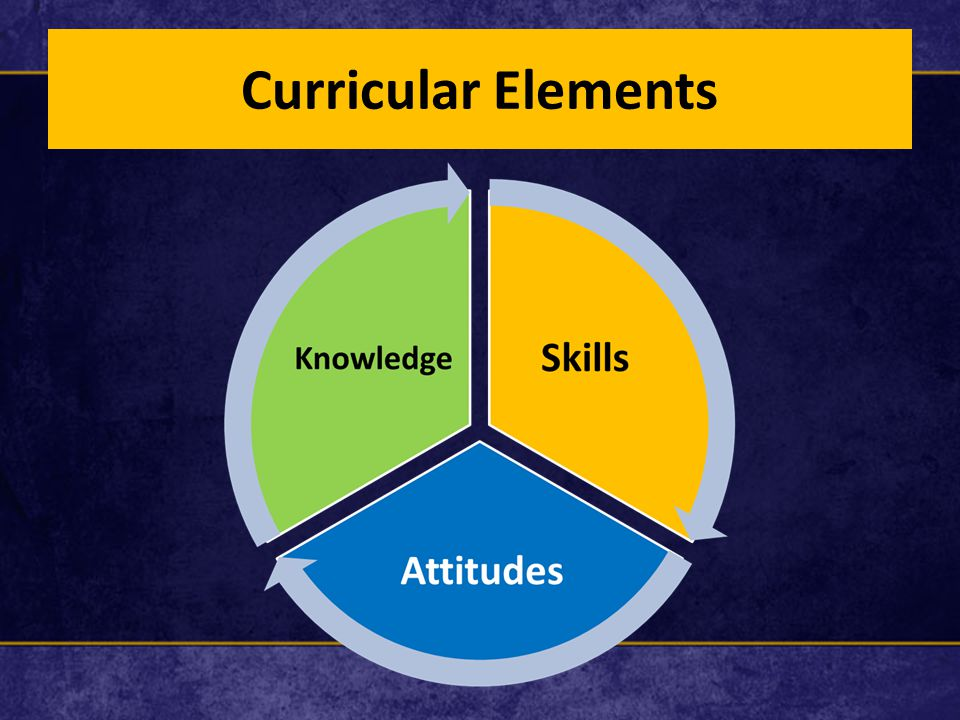 Curricular Elements
