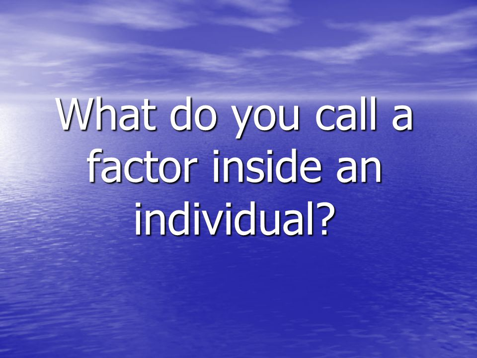 What do you call a factor inside an individual?