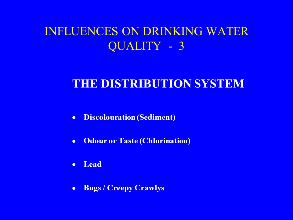 INFLUENCES ON DRINKING WATER QUALITY - 3 THE DISTRIBUTION SYSTEM  Discolouration (Sediment)  Odour or Taste (Chlorination)  Lead  Bugs / Creepy Crawlys