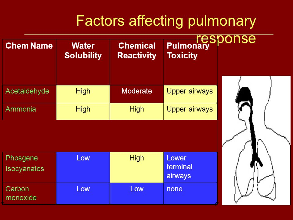 Factors affecting pulmonary response Chem NameWater Solubility Chemical Reactivity Pulmonary Toxicity AcetaldehydeHighModerateUpper airways AmmoniaHigh Upper airways ChlorineModerateHighLarge and intermediate airways Phosgene Isocyanates LowHighLower terminal airways Carbon monoxide Low none