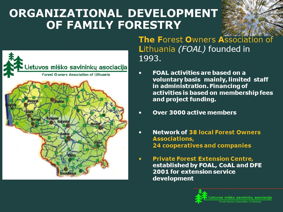 ORGANIZATIONAL DEVELOPMENT OF FAMILY FORESTRY The Forest Owners Association of Lithuania (FOAL) founded in 1993.