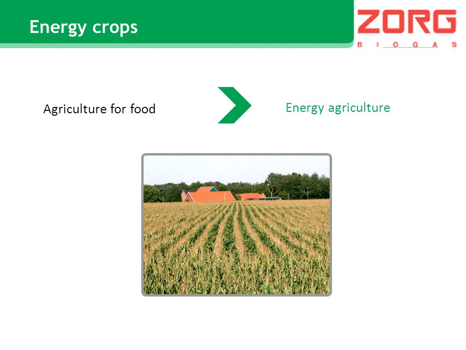 Energy agriculture Agriculture for food Energy crops