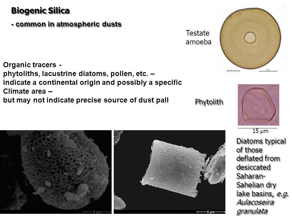 Diatoms typical of those deflated from desiccated Saharan- Sahelian dry lake basins, e.g.