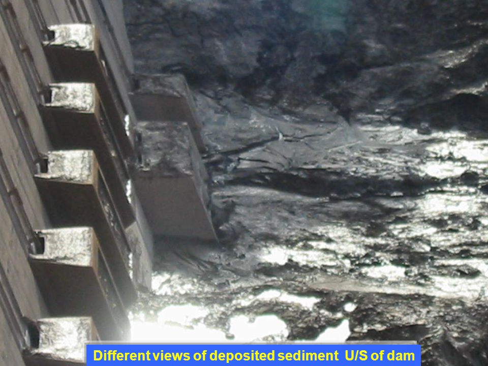 Different views of deposited sediment U/S of dam