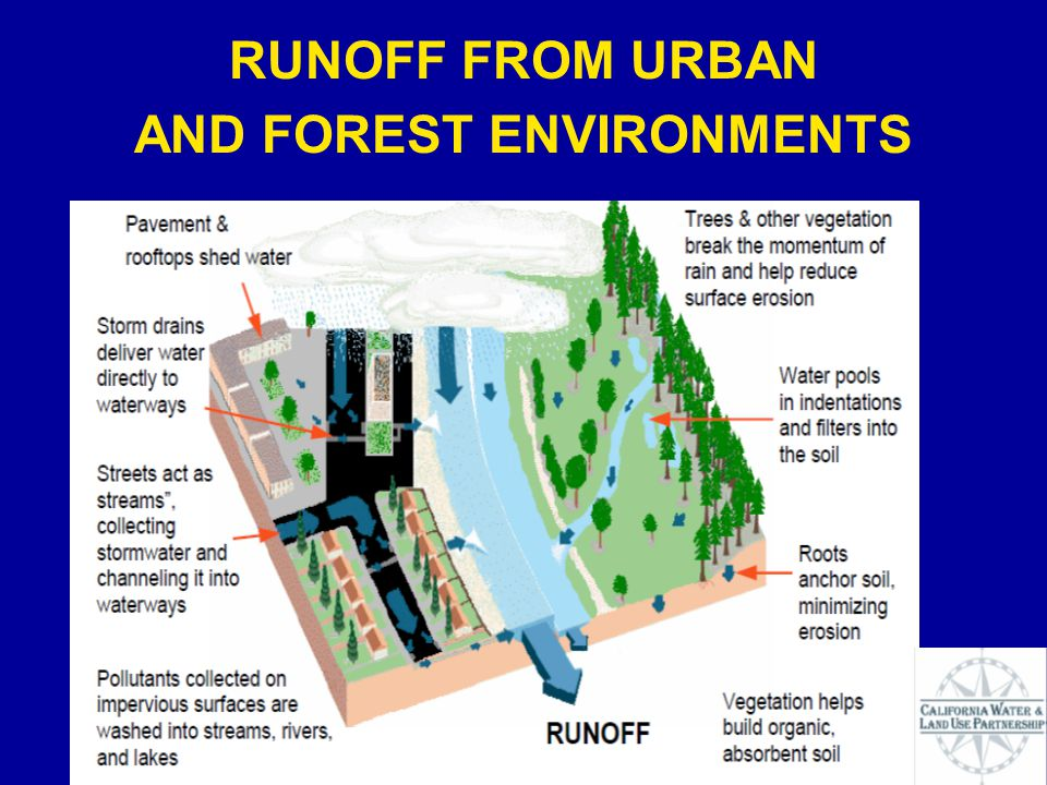 RUNOFF FROM URBAN AND FOREST ENVIRONMENTS