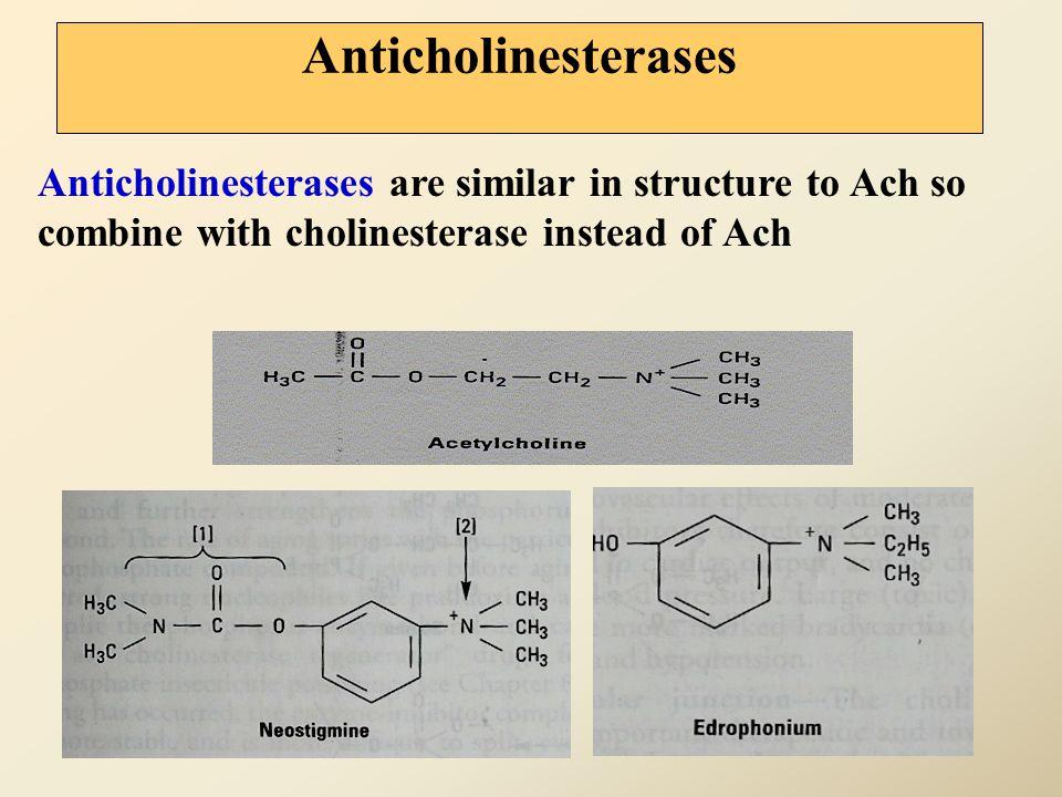 Indirect cholinomimetics (anticholinesterases) anticholinesterases Ach Nicotinic receptors & Muscarinic receptors Effects cholinesterase Choline + Ace