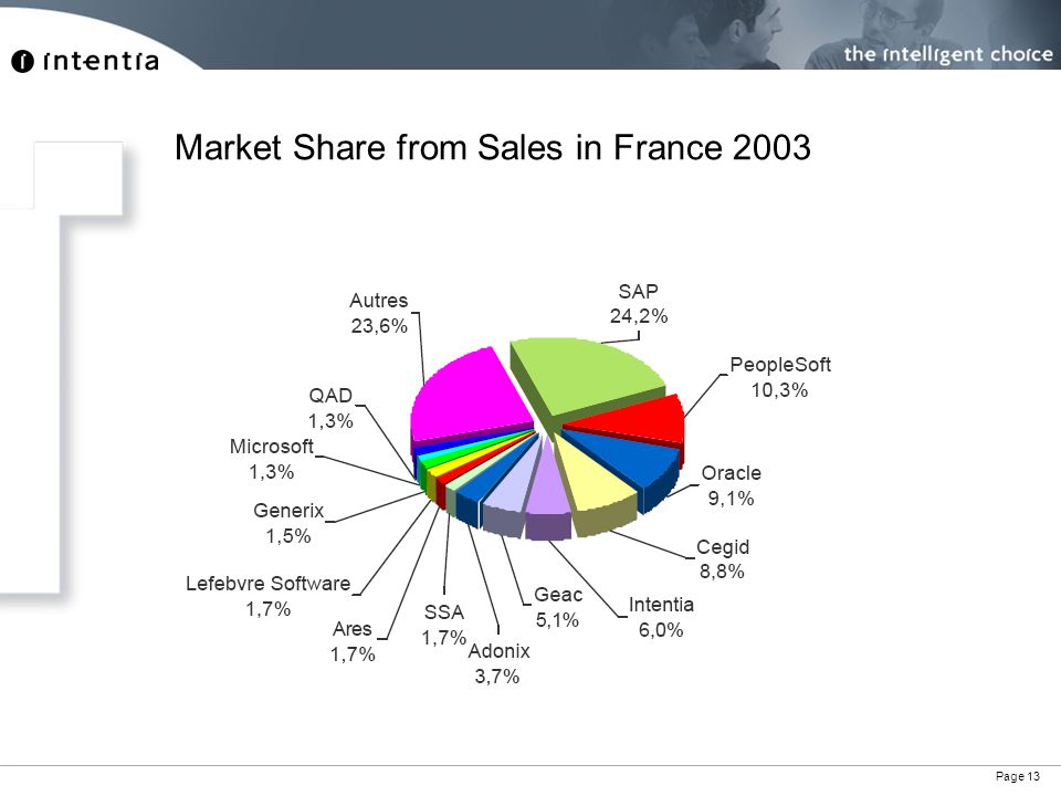 Page 13 Market Share from Sales in France 2003