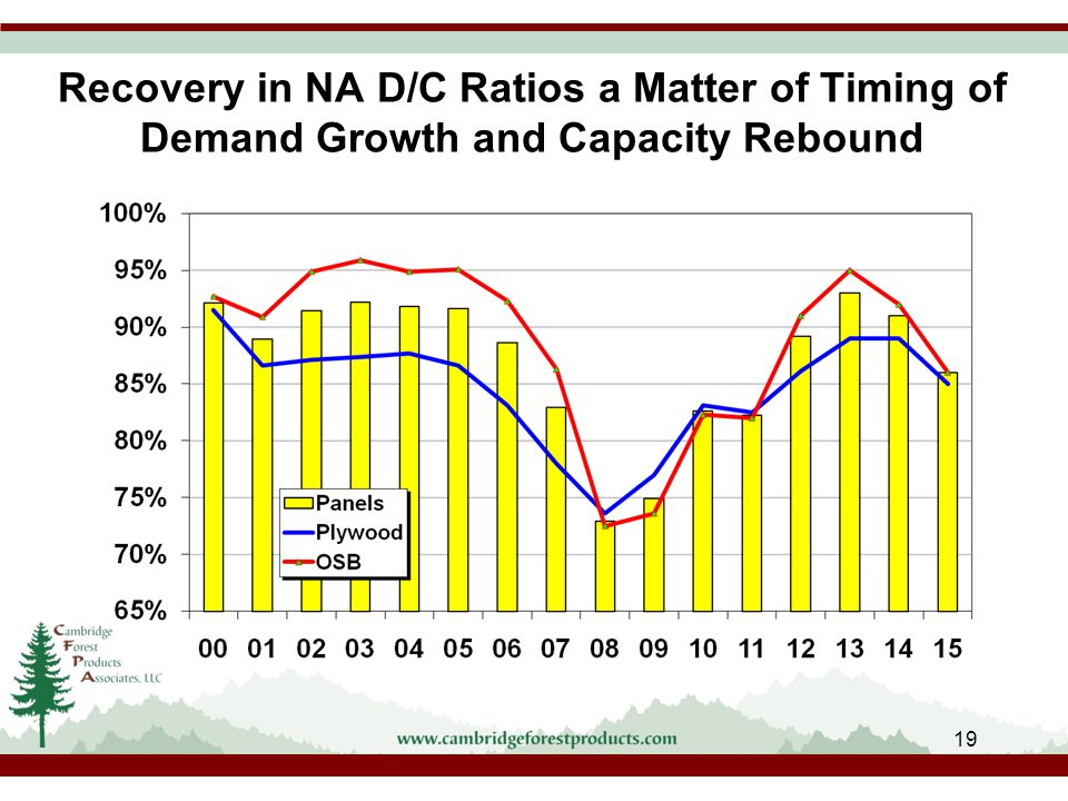 Recovery in NA D/C Ratios a Matter of Timing of Demand Growth and Capacity Rebound 19