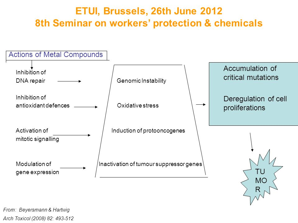ETUI, Brussels, 26th June 2012 8th Seminar on workers' protection & chemicals Inhibition of DNA repair Genomic Instability Inhibition of antioxidant defences Oxidative stress Activation of Induction of protooncogenes mitotic signalling Modulation of Inactivation of tumour suppressor genes gene expression TU MO R Accumulation of critical mutations Deregulation of cell proliferations From: Beyersmann & Hartwig Arch Toxicol (2008) 82: 493-512 Actions of Metal Compounds