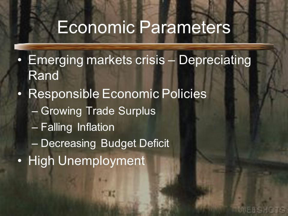 Economic Parameters Emerging markets crisis – Depreciating Rand Responsible Economic Policies –Growing Trade Surplus –Falling Inflation –Decreasing Budget Deficit High Unemployment