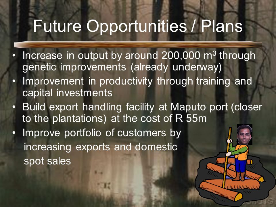 Future Opportunities / Plans Increase in output by around 200,000 m 3 through genetic improvements (already underway) Improvement in productivity through training and capital investments Build export handling facility at Maputo port (closer to the plantations) at the cost of R 55m Improve portfolio of customers by increasing exports and domestic spot sales
