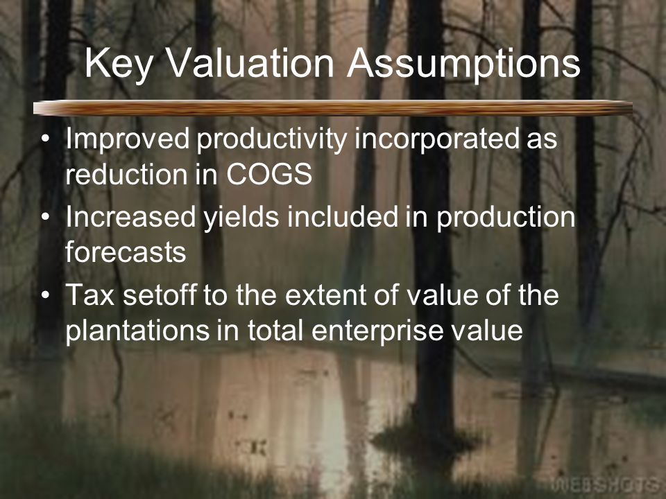 Key Valuation Assumptions Improved productivity incorporated as reduction in COGS Increased yields included in production forecasts Tax setoff to the extent of value of the plantations in total enterprise value