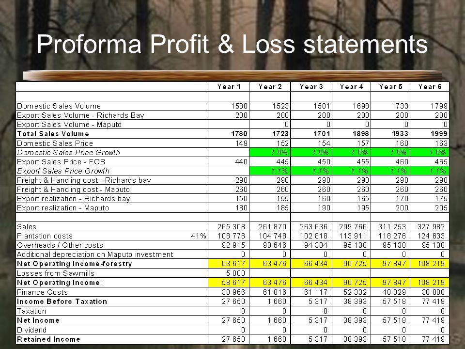 Proforma Profit & Loss statements