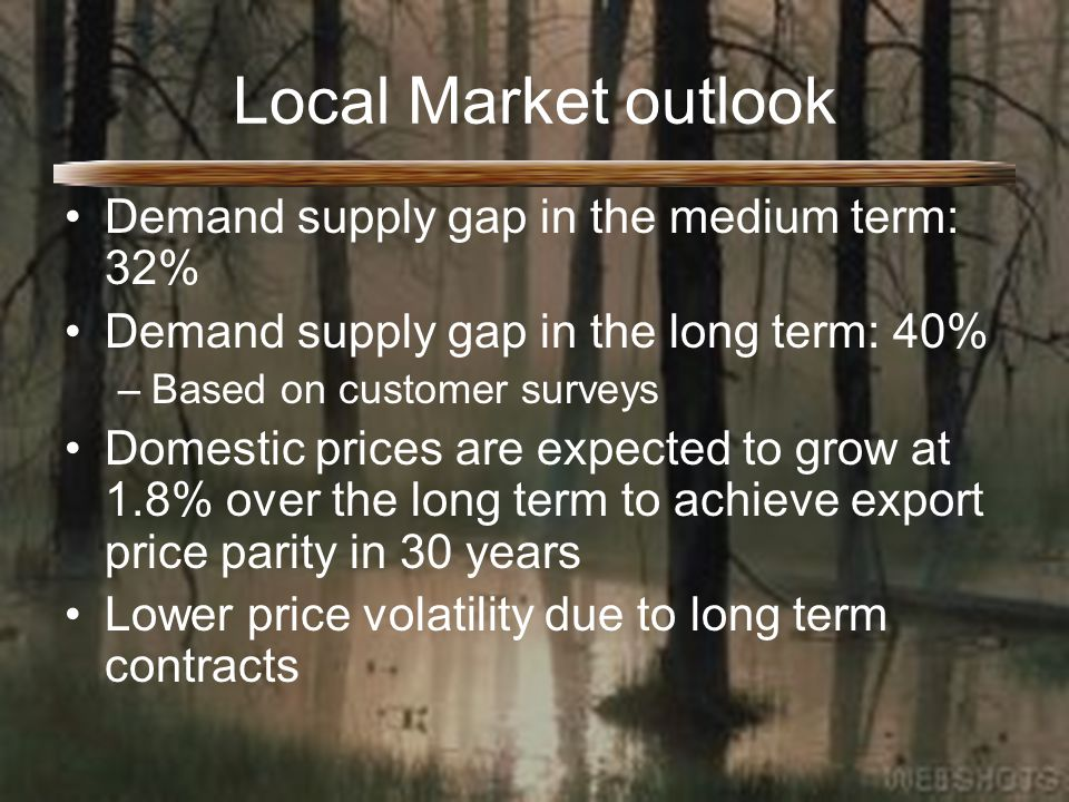 Local Market outlook Demand supply gap in the medium term: 32% Demand supply gap in the long term: 40% –Based on customer surveys Domestic prices are expected to grow at 1.8% over the long term to achieve export price parity in 30 years Lower price volatility due to long term contracts