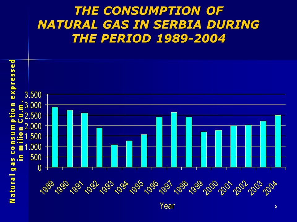 6 THE CONSUMPTION OF NATURAL GAS IN SERBIA DURING THE PERIOD 1989-2004