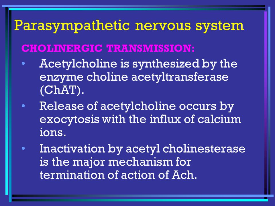 Parasympathetic nervous system CHOLINERGIC TRANSMISSION: Acetylcholine is synthesized by the enzyme choline acetyltransferase (ChAT).